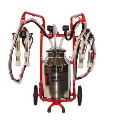 Double Fixed System Model TT2 11 Gal Bucket